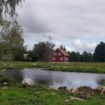 Våtmark_6