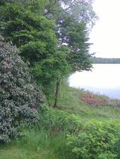 En bit av Storasjön