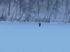 Is på sjön