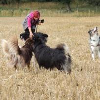 Hanna, Chip, Boss, Sammy och Blåna