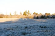 Kall och Frostig Nyårsafton 2011