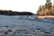 Hyllingsund i rimfrostskrud och förmiddagssol