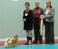 Ronja BIS med domarna Ann Rode och Petra Junehall.
