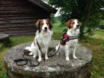Max och Zelda på kooikercampen
