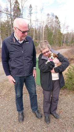 Jojo blir Katrineholmsbo hos familjen Johansson
