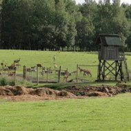 Photograph 1. Farm in Latvia