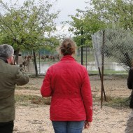Photograph 10. Visit of FEDFA to Univ farm