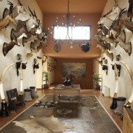 Lodge trophy room