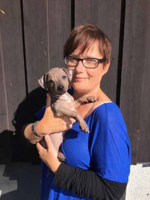 Dobby (Mr Bates) med sin nya matte Karin Sträng.