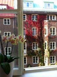 Utsikt från ett av kontorsrummen på 3 tr. (Photograph by Catherine Carlsson)