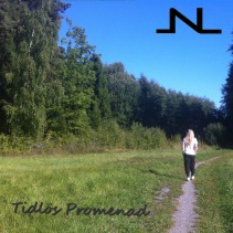 TIDLÖS PROMENAD - JNL - Album