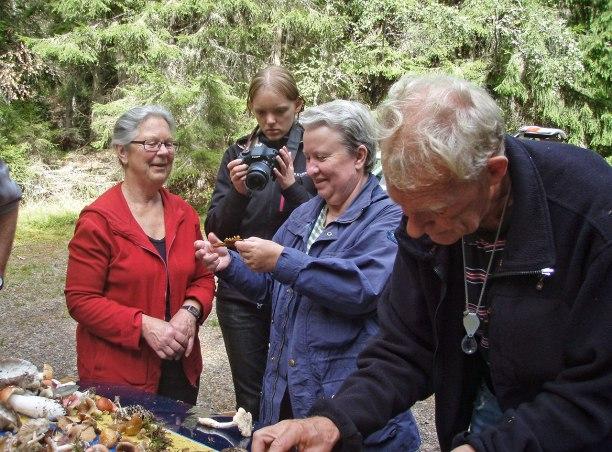 Granska, fotografera, lukta... trots att det inte fanns någon svamp, fick vi ihop över 70 olika arter!