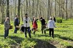 15 glada svampletare i Loringaskogen!