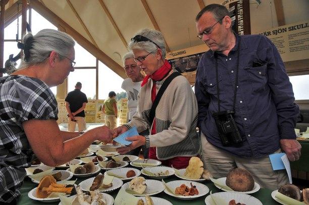 Utställningen vid Hornborgasjön. Brita pratar svamp!