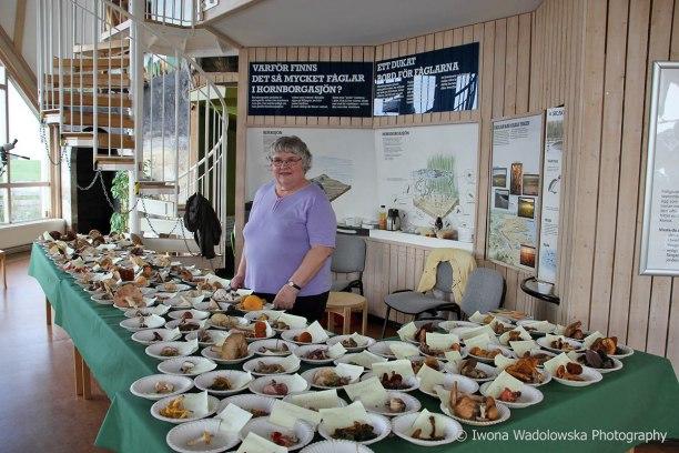 Marianne redo att ta emot alla besökare och svara på deras frågor om svamp!
