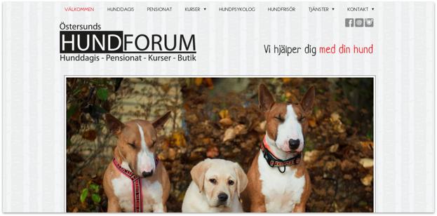 EFTER. Klicka på bilden för att komma direkt till Östersunds Hundforums hemsida