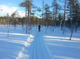 Skidspår Åsen Hällesjö