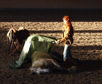 Siljan Horse show 2010