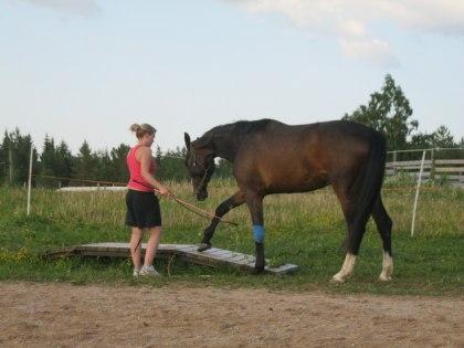 Carolina får undervisning med sin Hopphäst