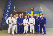 OS-laget och sparringpartners