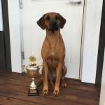 Nikki, winner of Ridge Race 2016