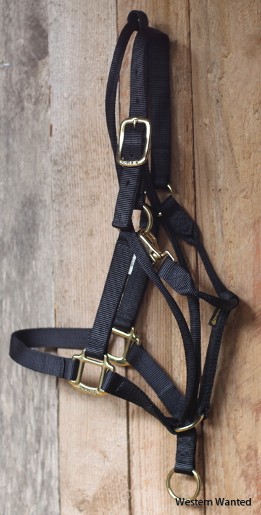 Western Wanted Halter - Training Durable Grimma