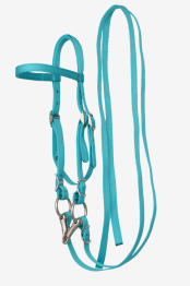 Olivia & Oliver Mini Headstall/Bridle - Mini Headstall/Bridle Turquoise