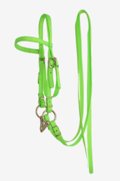 Olivia & Oliver Mini Headstall/Bridle - Mini Headstall/Bridle Lime