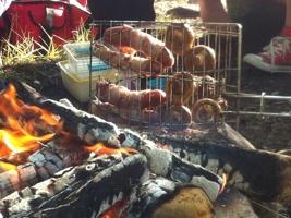 VSF grillning på Hissö
