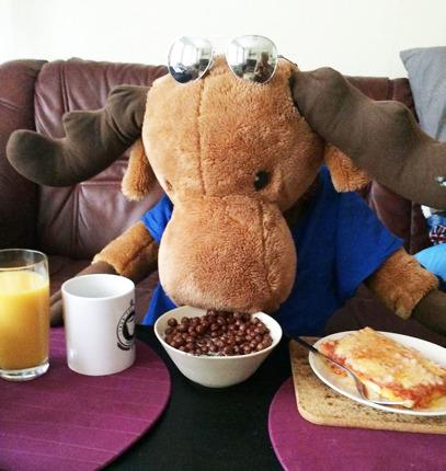 Eselot äter frukost med en av sina Rookies.