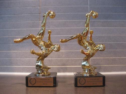Bild: Pokaler som delas ut till vinnare av Esekons fifaturnering 2015.