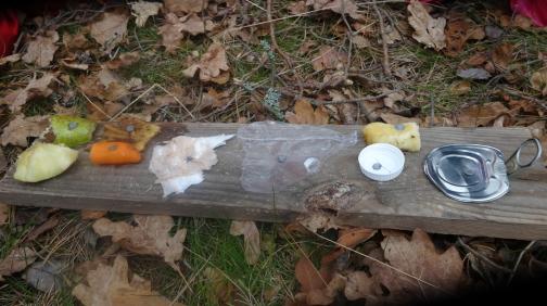 Aluminium, plastlock, plastpåse, papper, bananskal, banan, äpple, päron och morot spikade vi upp på våran naturplanka.
