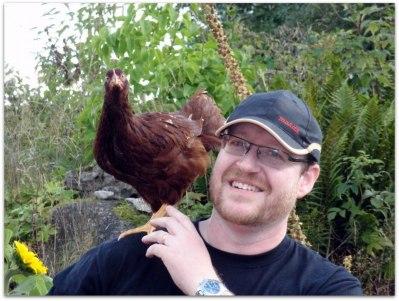 Fredrik med en Rhode island red höna