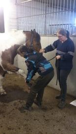 Agneta, Akar och hästen Berry