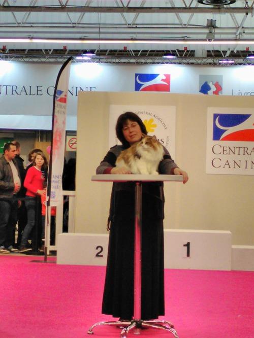 - Saffran med sin ägare; Marie-Pierre, på mästerskapet