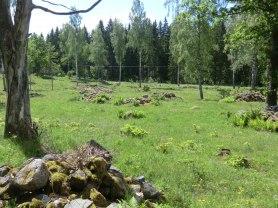 Blomstermålen soldattorp. Man kan skönja vägen till Åsjögle i bakgrunden av bilden.