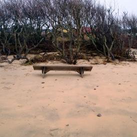 Strandlyckan-mot-Ingemars