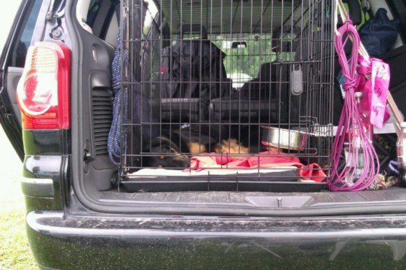 Ella sover numera i bilen.