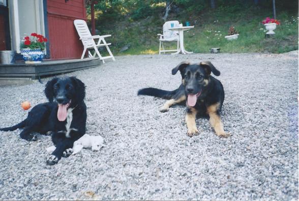 Moa och Keiko