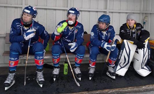 Gabbe, Frommen, Rex (född 01) och Olle Sandin (född 03).