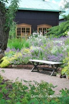 Öppna ytor och högre baksida i trädgården ger rumslighet.