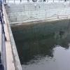 Förbjudet Ghettiofiske