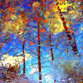 "Fotografisk konst / Fototavla  ""NOVEMBER 2""  (Format 1x1)"