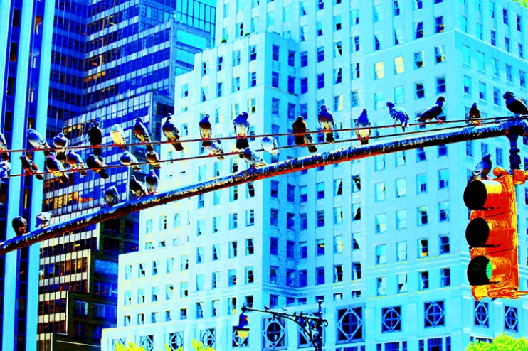 """Fotografisk konst / Fotokonst / Fototavla - New York - """"TRAFFIC LIGHT"""" (Format 3x2)"""