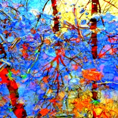 "Fotografisk konst / Fototavla  ""NOVEMBER 1""  (Format 1x1)"