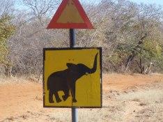 Varning för elefanter