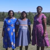 GU o Zimbabwegästerna