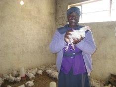 Kvinnan som driver kycklingfarmen