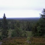 fornborg 009