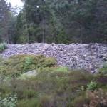 fornborg 014